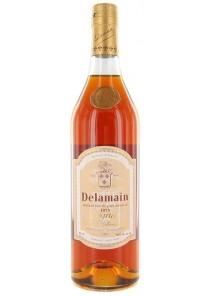Cognac Delamain Riserva 1973 0,70 lt.