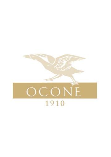 Aglianico del Taburno Diomede Ocone 1996 0,75 lt.
