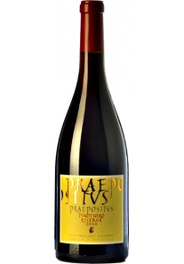 Pinot Nero Abbazia di Novacella Ris. Praepositus 2012 0,75 lt.