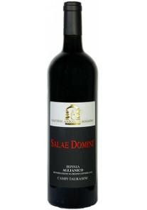 Aglianico Caggiano Salae Domini 2011 0,75 lt.